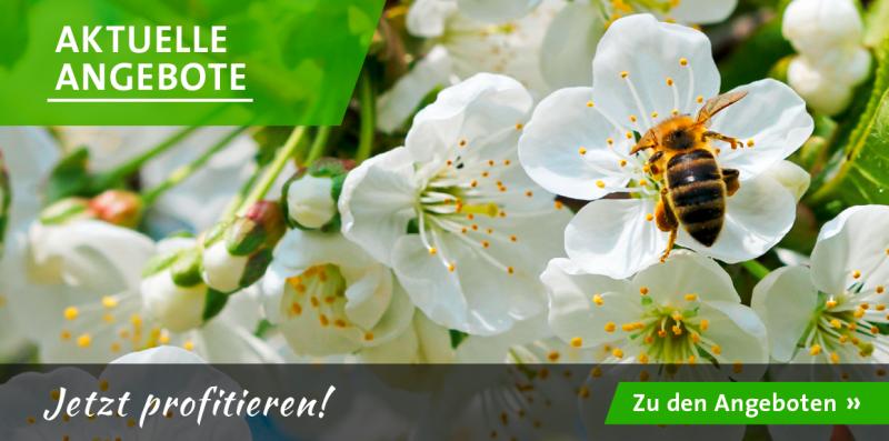Das Schweizer Online Gartencenter