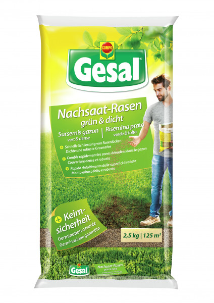 Gesal Nachsaat-Rasen grün & dicht