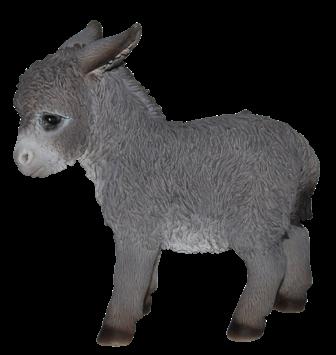 Esel-Baby klein