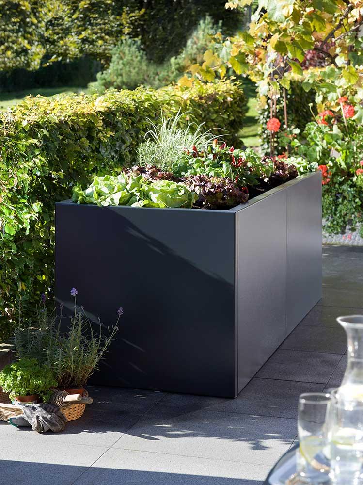 hochbeet anzucht garten terrasse das schweizer. Black Bedroom Furniture Sets. Home Design Ideas